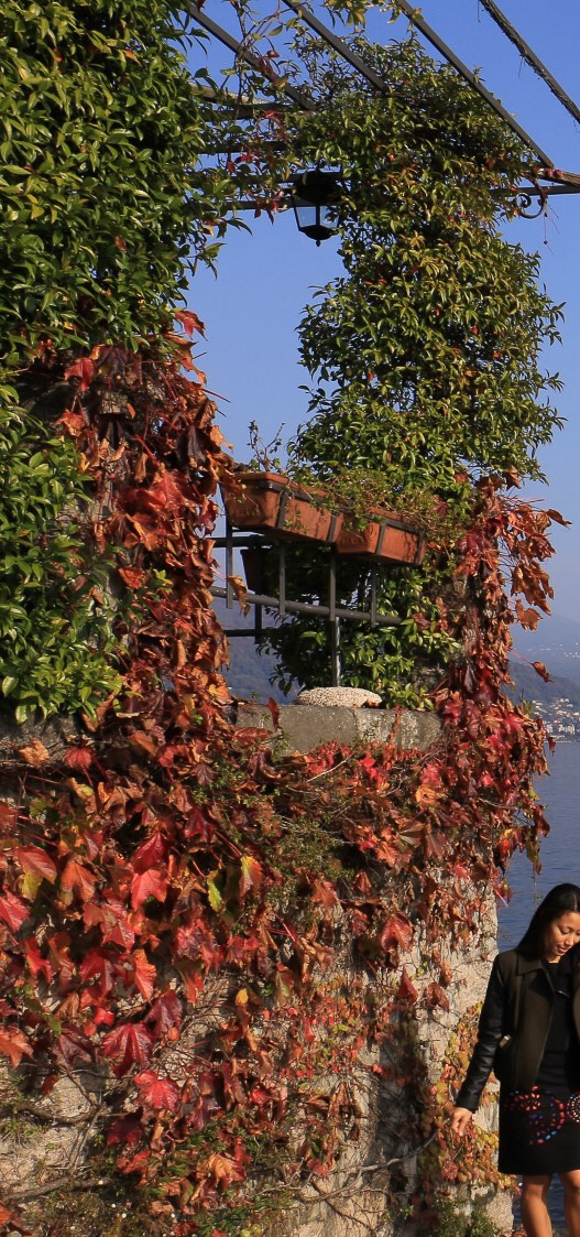 autumn-11
